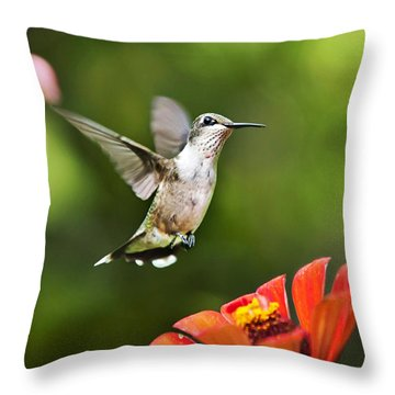 Shimmering Breeze Hummingbird Throw Pillow by Christina Rollo