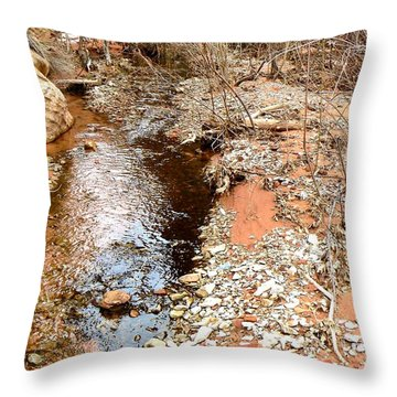 Shimmering Spring Creek  Utah Throw Pillow by Deborah Moen