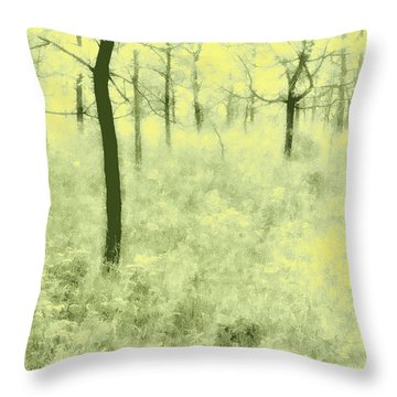 Throw Pillow featuring the photograph Shimmering Spring Day by John Hansen