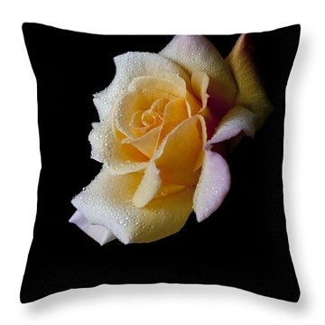 Throw Pillow featuring the photograph Shimmering by Doug Norkum