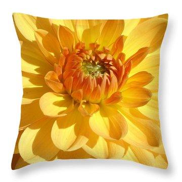 Shine Bright Throw Pillow by Ramabhadran Thirupattur