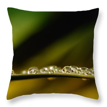 Shine Like Diamonds Throw Pillow by Kent Mathiesen