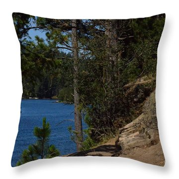 Shine On Throw Pillow by Greg Patzer