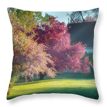 Shine The Light On Me Throw Pillow by Bill Wakeley