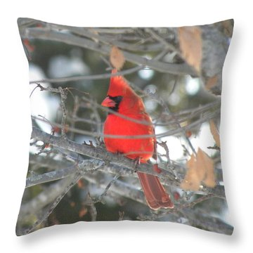 Shining Bright Red Throw Pillow