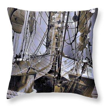 Throw Pillow featuring the photograph Shining Sea by Robert McCubbin