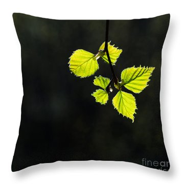 Throw Pillow featuring the photograph Shining Springtime by Kennerth and Birgitta Kullman