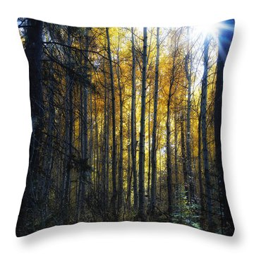 Throw Pillow featuring the photograph Shining Through by Belinda Greb