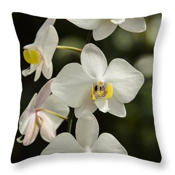 Shinning Orchids Throw Pillow by Penny Lisowski