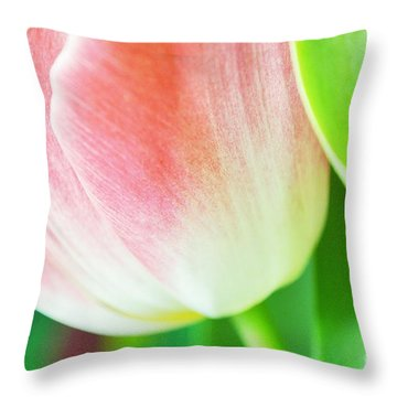 Shiny Throw Pillow by Felicia Tica