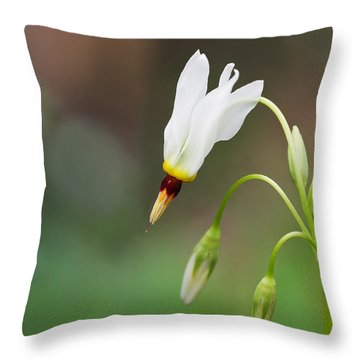 Shooting Star Wildflower Throw Pillow by Melinda Fawver