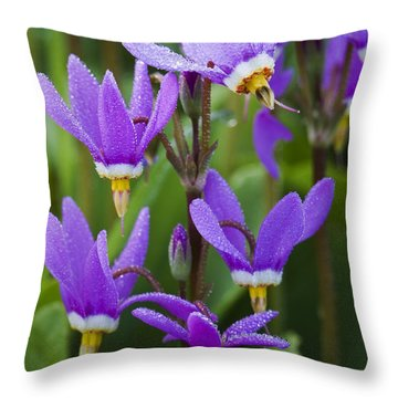 Throw Pillow featuring the photograph Shooting Stars by Sonya Lang