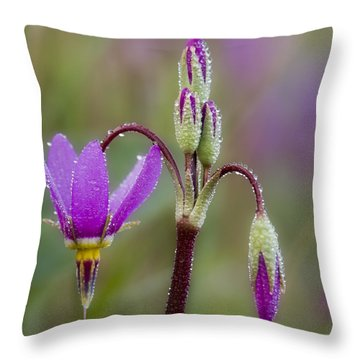 Throw Pillow featuring the photograph Shooting Stars Square by Sonya Lang