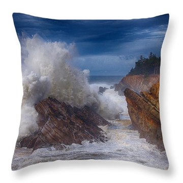 Shore Acre Storm Throw Pillow by Darren  White