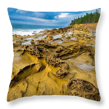 Shore Acres Sandstone Throw Pillow by Robert Bynum