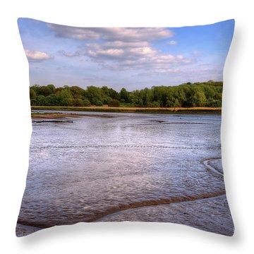 Shore Line Throw Pillow by Svetlana Sewell