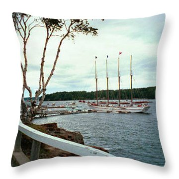 Shore Path In Bar Harbor Maine Throw Pillow by Judith Morris