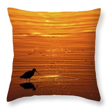 Shorebird Sunset Mission Bay Park San Throw Pillow