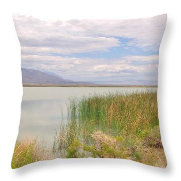Throw Pillow featuring the photograph Shoreline by Marilyn Diaz