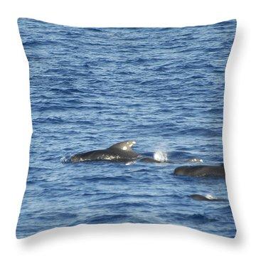 Short Finned Pilot Whales Throw Pillow