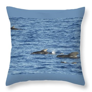 Short Finned Pilot Whales Throw Pillow