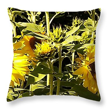 Shout Out Summer Throw Pillow by Martin Howard