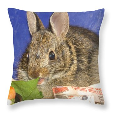 Throw Pillow featuring the photograph Show Me The Spinach by Margaret Newcomb