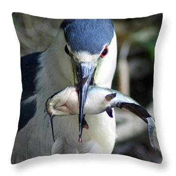 Throw Pillow featuring the pyrography Showing Off His Lunch by Shoal Hollingsworth