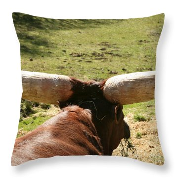 Throw Pillow featuring the photograph Showing Off My Rack by Carol Lynn Coronios