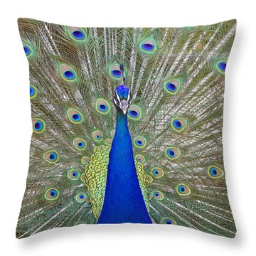Throw Pillow featuring the pyrography Showing Off by Shoal Hollingsworth
