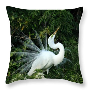 Showy Great White Egret Throw Pillow by Sabrina L Ryan
