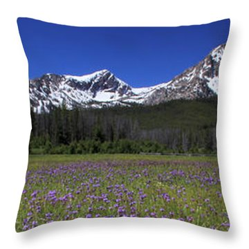 Showy Penstemon Wildflowers Sawtooth Mountains Throw Pillow