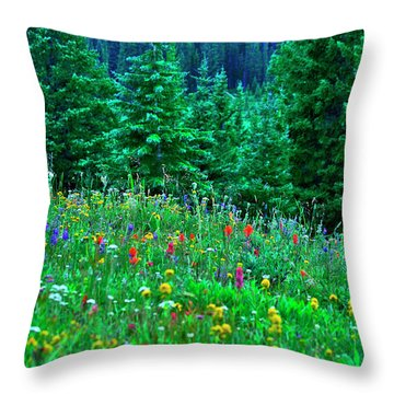 Shrine Pass Wildflowers Throw Pillow