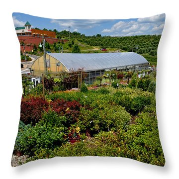 Shrubbery At A Greenhouse Throw Pillow by Amy Cicconi
