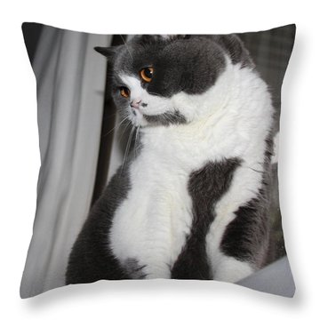 Shuli  Throw Pillow