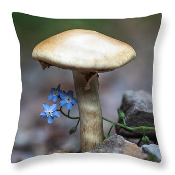 Shy Throw Pillow by Aaron Aldrich