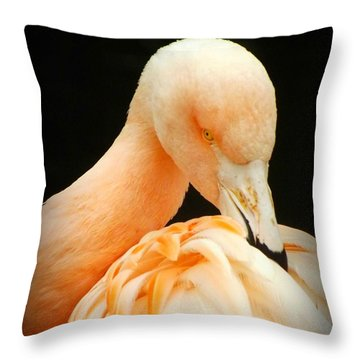 Throw Pillow featuring the photograph Shy by Clare Bevan