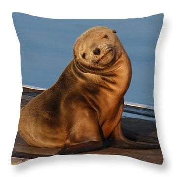Shy Sea Lion Pup  Throw Pillow