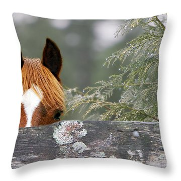Shyness Throw Pillow by Michelle Twohig