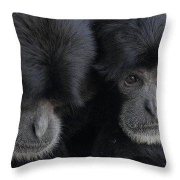 Siamang Pair Throw Pillow