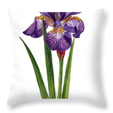 Siberian Iris II - Iris Sibirica Throw Pillow