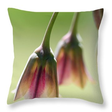 Sicilian Honey Garlic Throw Pillow