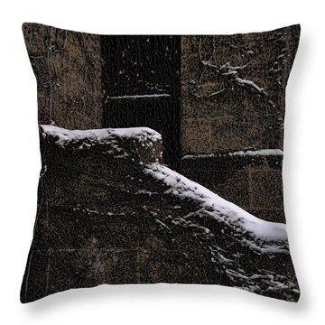 Side Door Throw Pillow by Jasna Buncic
