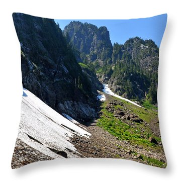 Throw Pillow featuring the photograph Side View Of 22 by Rebecca Parker