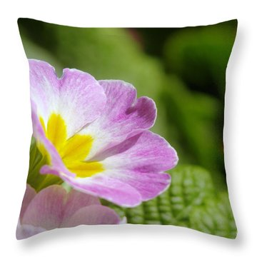 Side View Of A Spring Pansy Throw Pillow by Jeff Swan