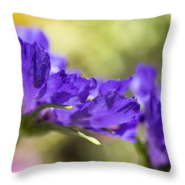 Sideview Throw Pillow by Caitlyn  Grasso