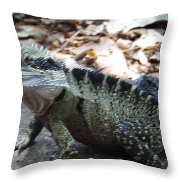Sideway Glance Throw Pillow