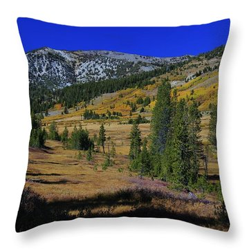 Throw Pillow featuring the photograph Sierra Fall  by Sean Sarsfield