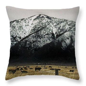 Sierra Nevada Mountains Near Lake Tahoe Throw Pillow