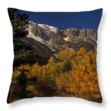 Sierra Nevadas In Autumn Throw Pillow by Ron Sanford
